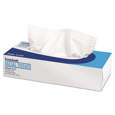 FACIAL TISSUE 2PLY/100S/30BX/CS